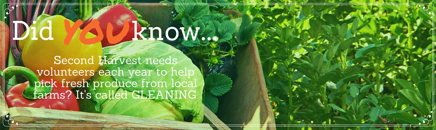 Did you know... gleaning (1)